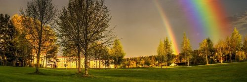 field rainbow
