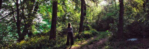 woman goes bush walking alone in forest
