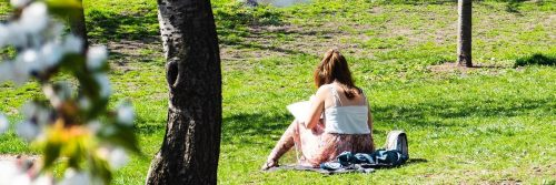 woman sits facing backward on green grass writing sunbathing in sunny sky