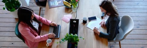 two women sit in co working office working studying beside fresh fruit plate plant pot coffee mug