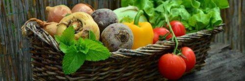 healthy vegetables capsicum tomato cabbage onion potato