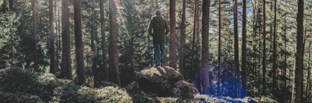 man stands facing backward on rock in forest in sunny blue sky