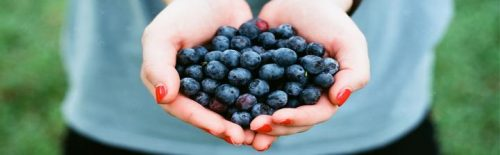 hands carrying blueberry