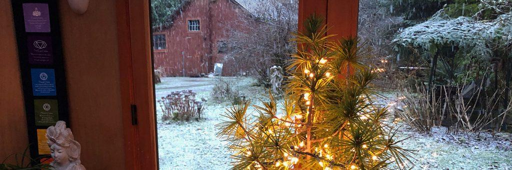 beautiful lights on tree beside snowy area